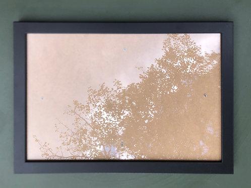 Zwart houten lijst met glas 20x30 cm