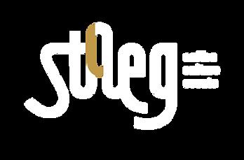 logo stAeg