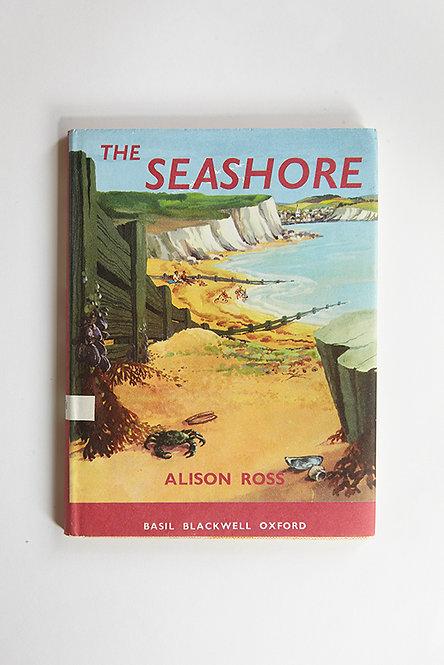 OK5181 - The Seashore