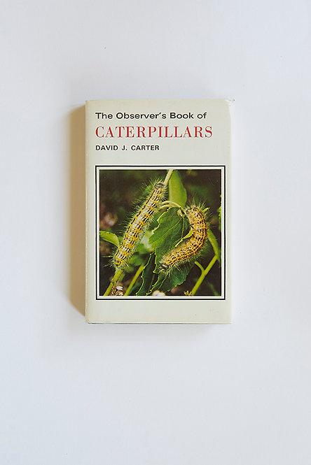 OK5202 - Observer's Caterpillars