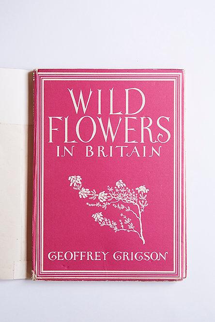OK5287 - Wild Flowers in Britain
