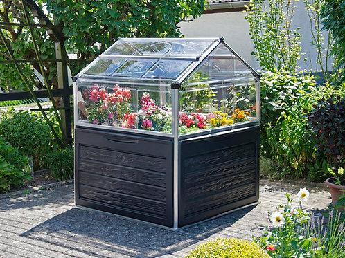 מיני חממה ביתית 1.2x1.2 Plant-inn