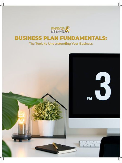 Business Plan Fundamentals Quick Guide