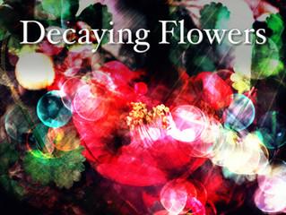 三島元樹 最新ミニアルバム『Decaying Flowers』配信リリース開始!