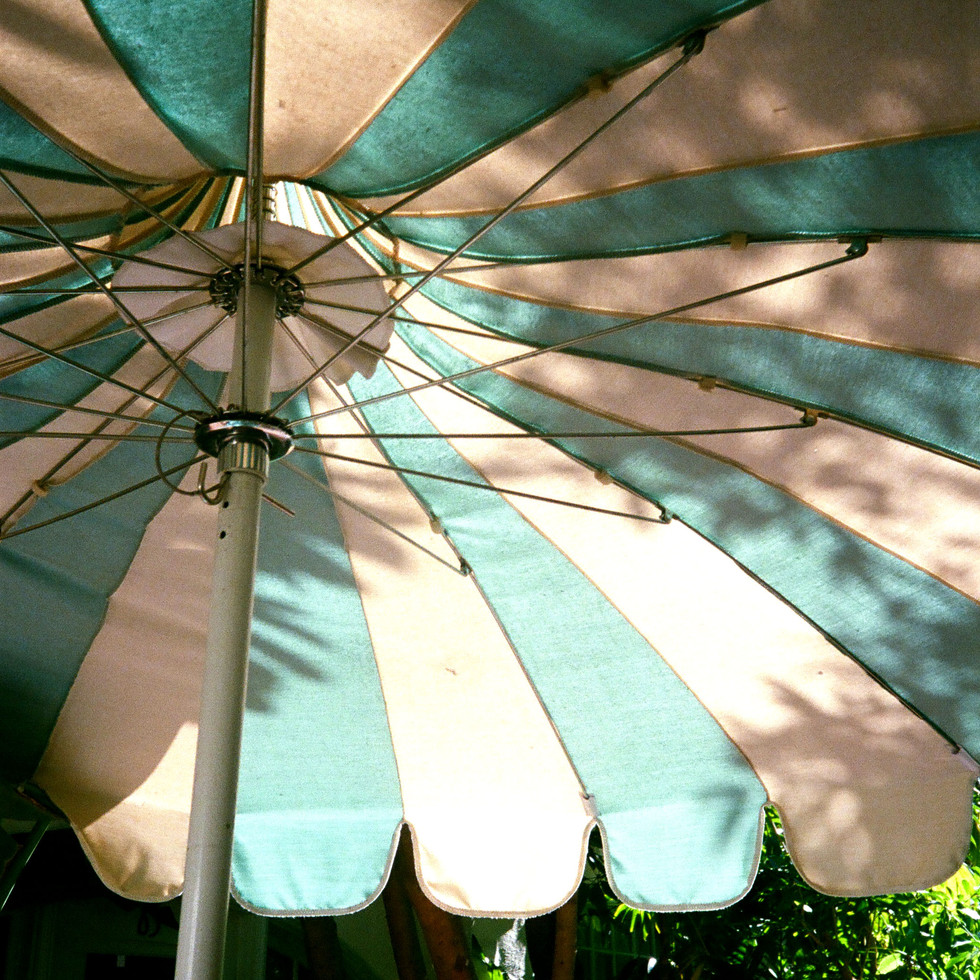 CHATEAU UMBRELLA_FALL 19.jpg