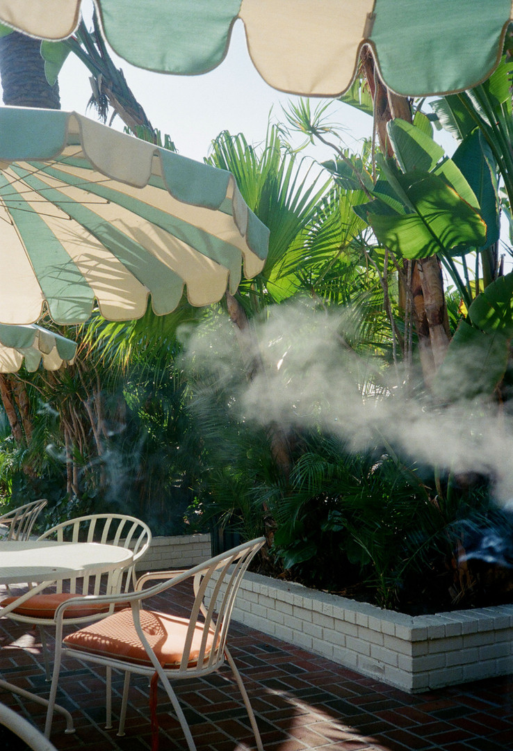 SMOKE IN THE AIR_FALL 19.jpg