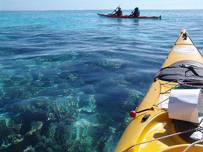 ningaloo-reef-kayaking-adventure