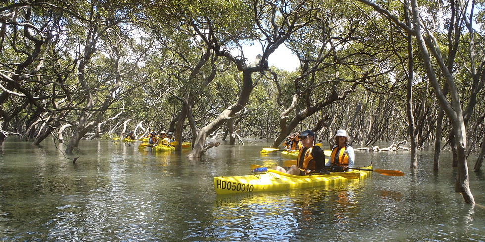 WOW Akuna Bay to Smiths Creek