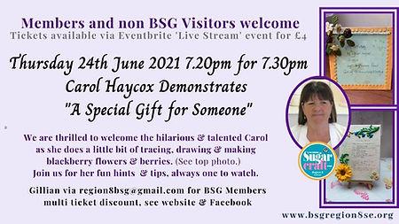 Carol Haycox June demo.jpg