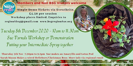 Sue Workshop Spray Poster.jpg