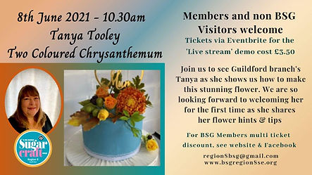 Copy of Tanya Tooley 8th June Chrysanthe