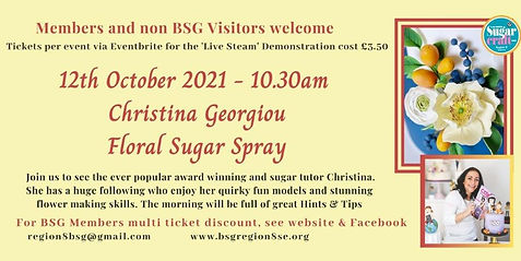 Oct Christina Georgiou Floral Spray  3.50.jpg