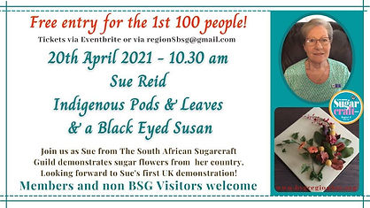 Sue Reid Sugar Flowers and pods .jpg