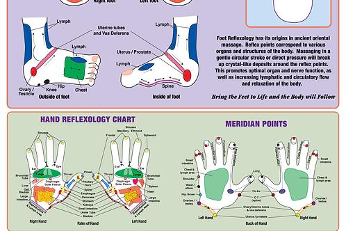 "Integrative Reflexology® Cloth Poster (24""x 40"")"