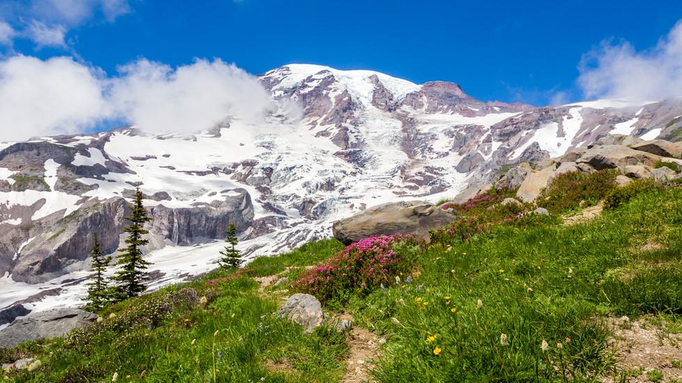 Mount Rainier in late July