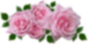 roses-3346119_960_720.png