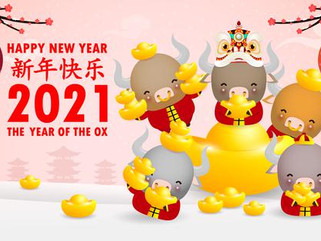 Happy Chinese Niu Year 2021