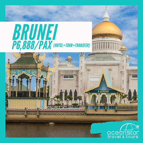 BRUNEI 3D2N (FREE & EASY)