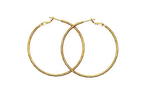 Gold Hoopster Earring