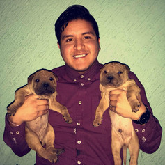 edgar likes puppies.jpg