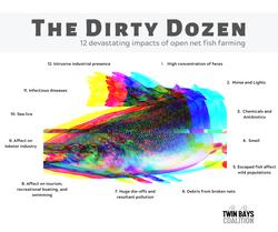 Twin Bays_The Dirty Dozen