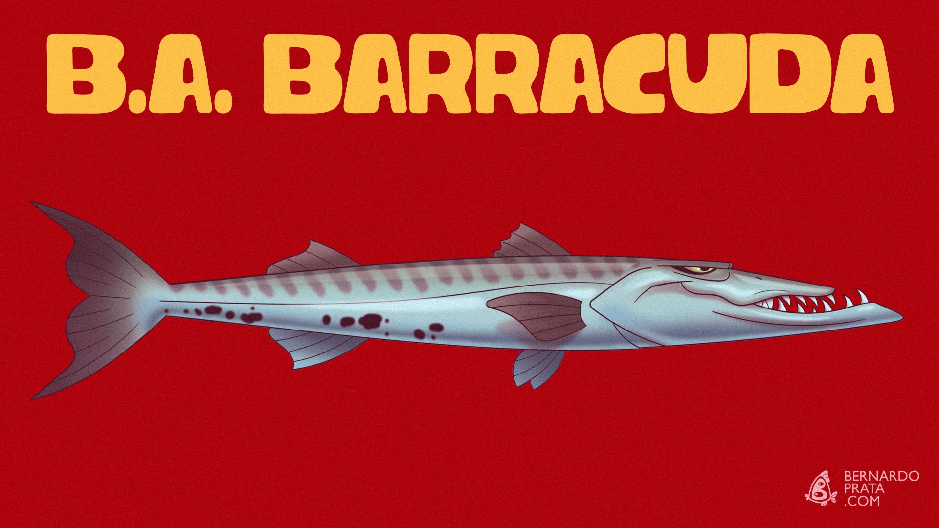 Board_B_A_BARRACUDA