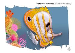 Peixe-Borboleta-Bicuda
