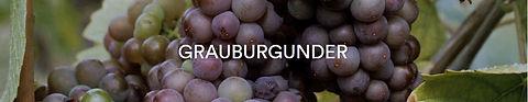 Rebsorte Grauburgunder.JPG