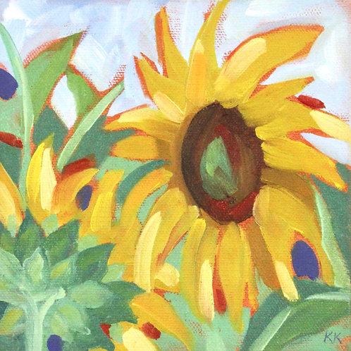 Sunflowers 5