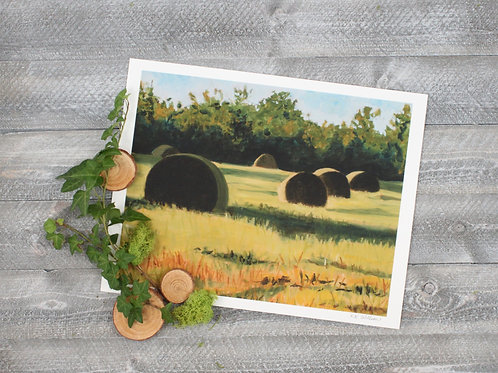 First Bales
