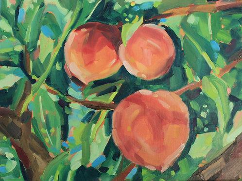 Peach Trio