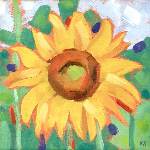 Sunflowers 7