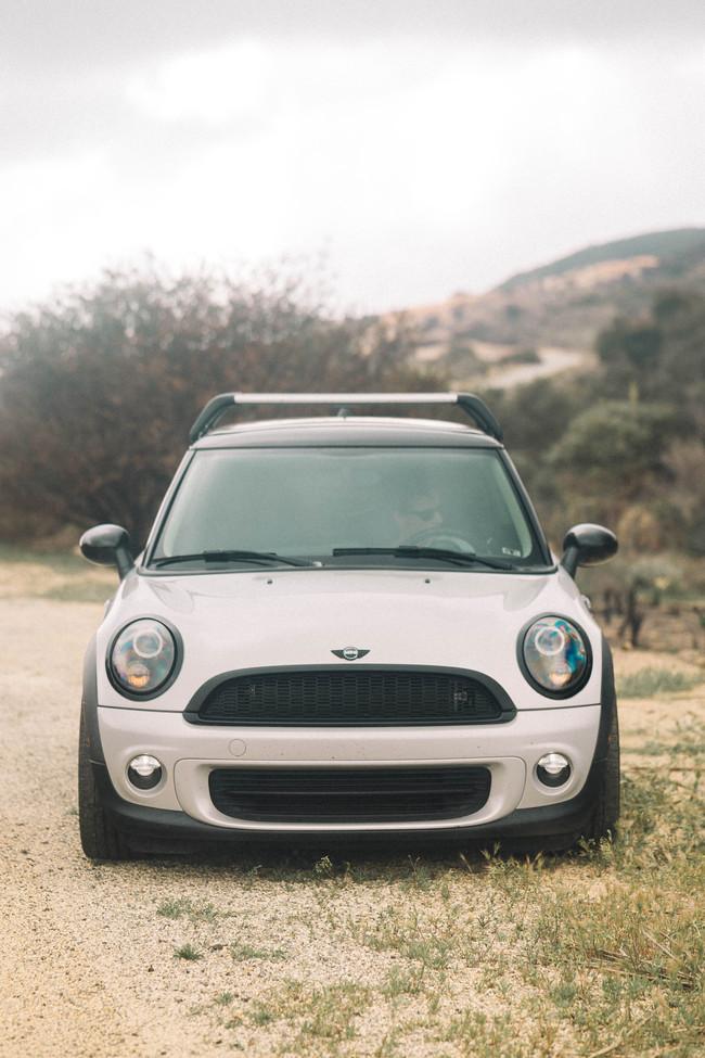 Mini in the wild