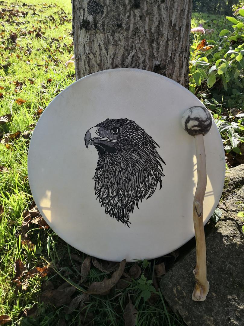 Adlertrommel