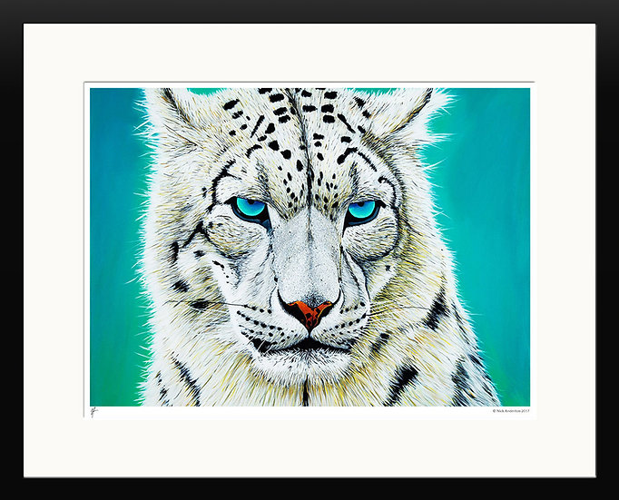 'Snow Leopard' Limited Edition Print