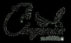 Logo-transparent-für-HP.png
