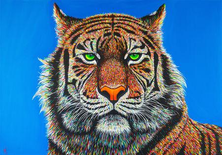 'Tigris' (2017) - SOLD