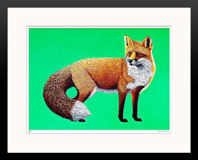 'Foxy' Limited Edition Print