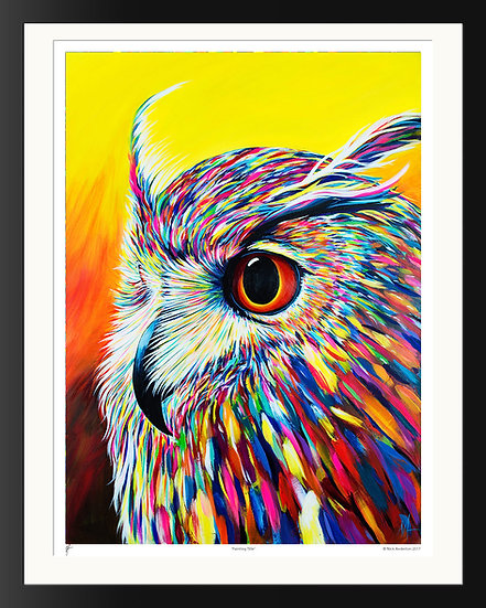'Spectral Owl' Signed Print