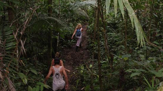 Amazonas Morete Cocha