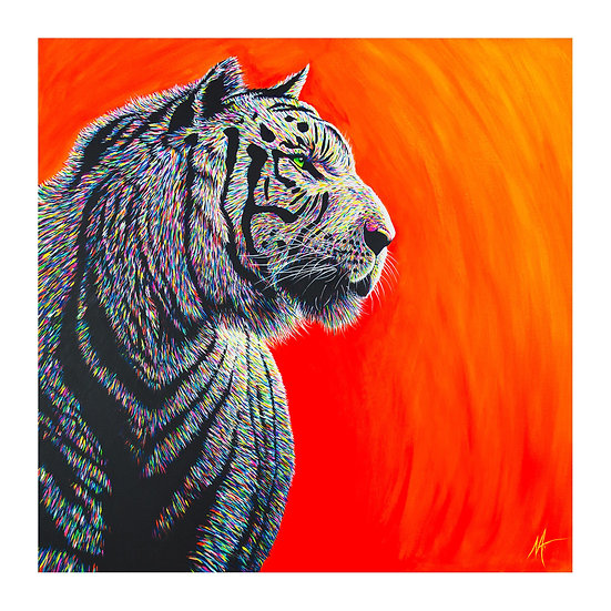 'Khan' Limited Edition Print