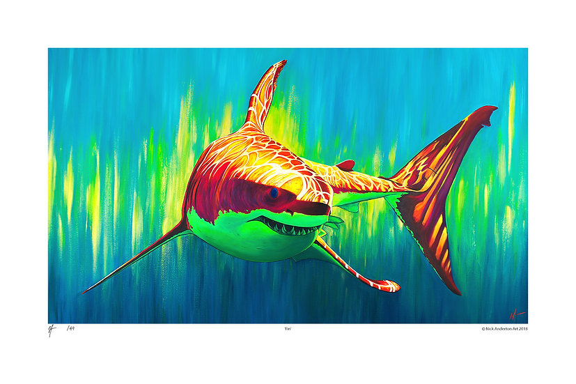 'Fin' Limited Edition Signed Print