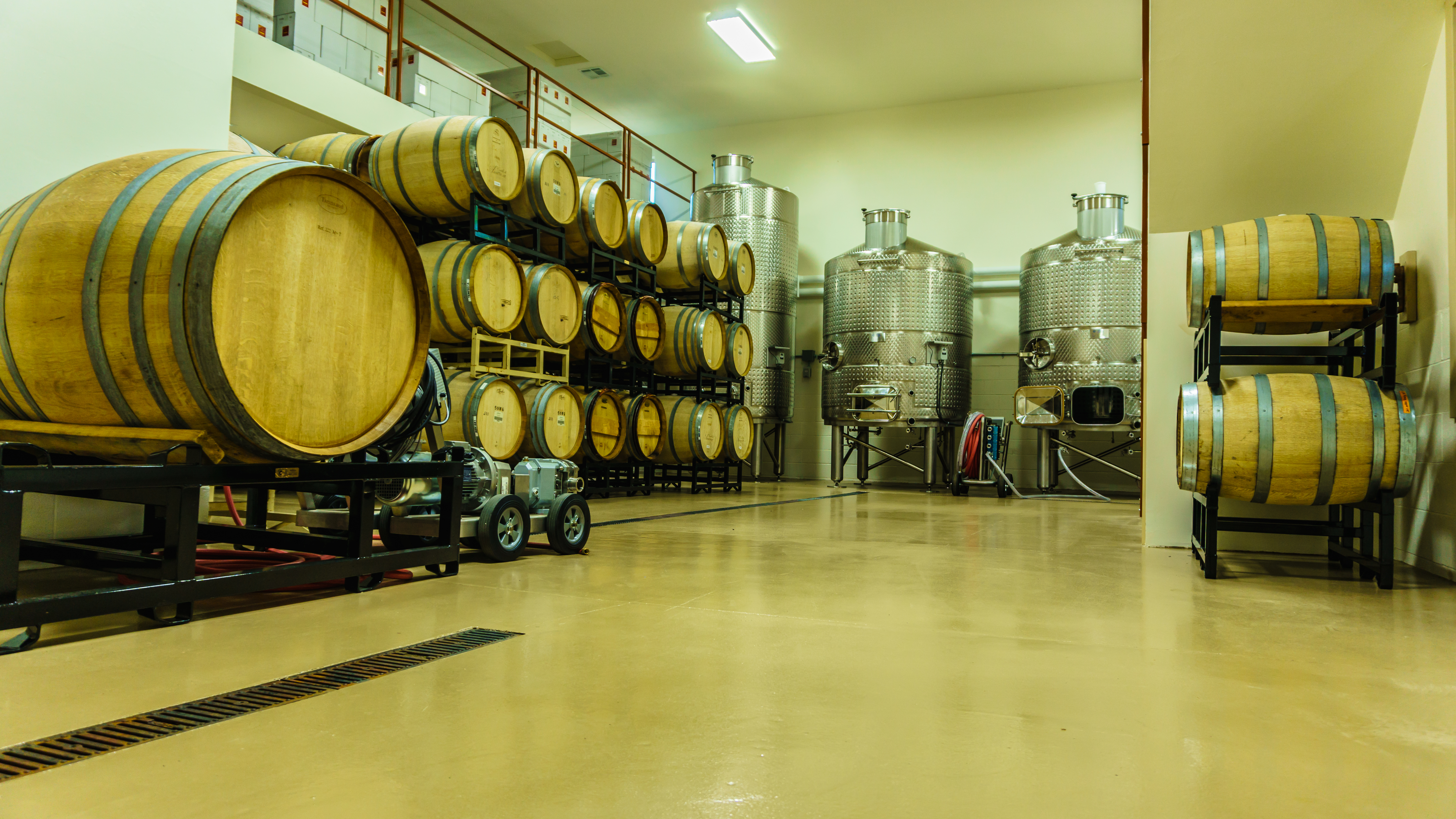 Wine Barrels and steel tanks