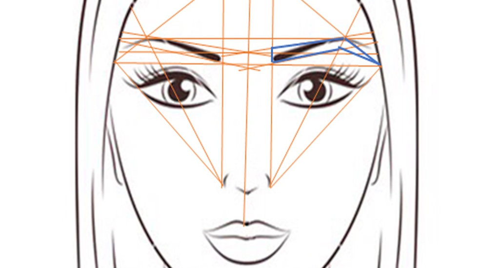 Brow Mapping Manual
