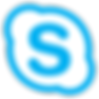 Free skype consultation