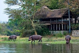 mvuu-lodge-malawi-lodges-malawian-style-