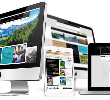 Connection Website Designs Non Profit Websites