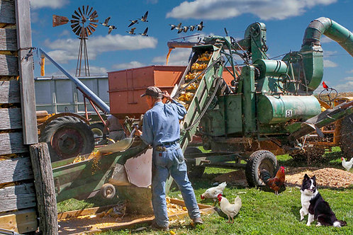 Corn Sheller 200 Piece