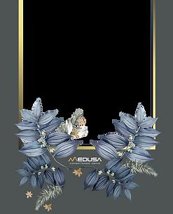 marco 3 medusa(2).png