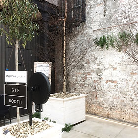gif booth and photo booth installation with trees and foliage